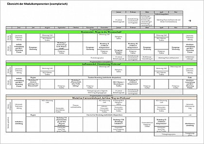 Overview programme timetable